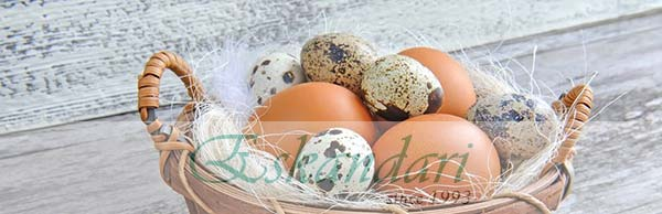 اهمیت مصرف تخم مرغ