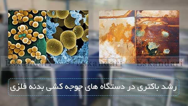رشد باکتری در دستگاه های جوجه کشی بدنه فلزی