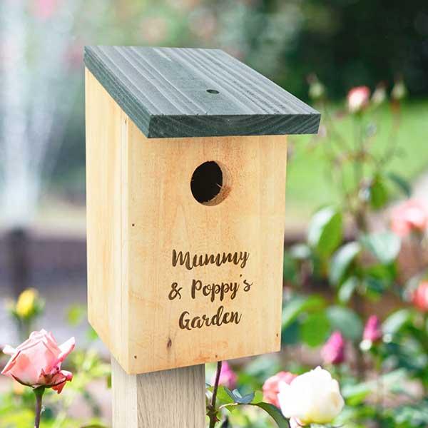 آشیانه سازی پرندگان