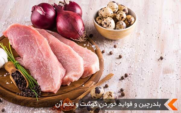 بلدرچین و فواید خوردن گوشت و تخم آن