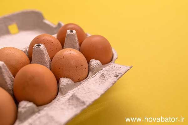کیفیت مناسب پوسته تخم مرغ