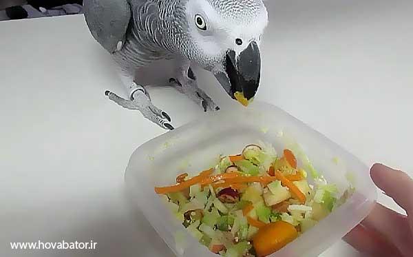 استفاده از میوه و سبزیجات